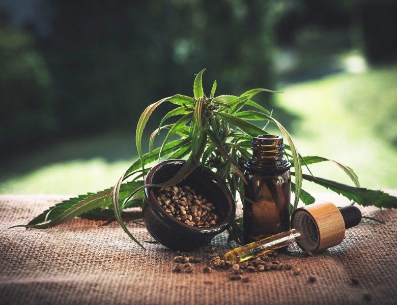 Du cannabis en toute légalité